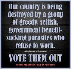 VTO! Republican Jesus on Facebook