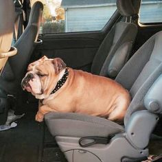 Driving Miss Daisy.