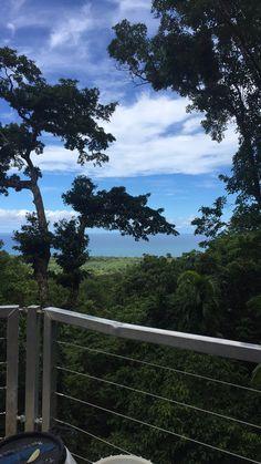 Travel Recommendation: Daintree Rainforest Zipline