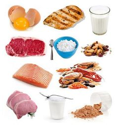 Proteins are the brick and mortar of the human body. Not only do they build and repair muscle, they are also key contributors to enzymes and antibodies that help keep you healthy. There is no doubt…