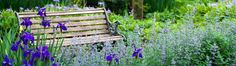 Take a break from every day life and relax in a beautiful setting created by J.W. Townsend, Inc.  Beautiful purple irises.