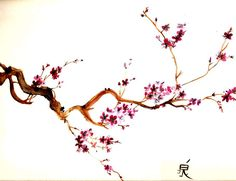 Скачать бесплатно картинку на телефон Растения, Цветы, Азия, Рисунки, Сакура.