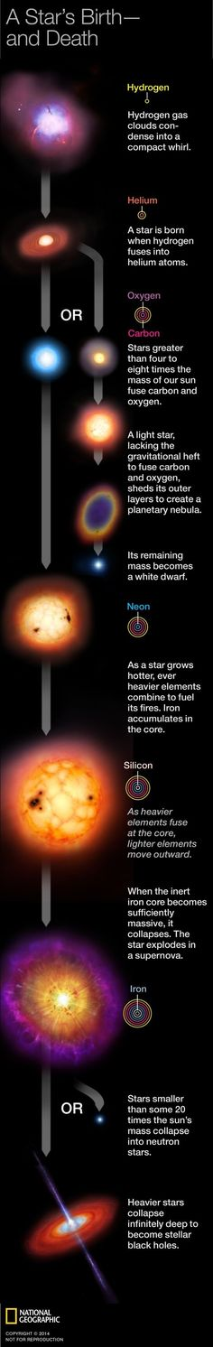 Astronomy Universe A STAR'S BIRTH AND DEATH --- In this graphic discover what takes for a star to be born. By Jason Treat and Alexander Stegmaier. Published on March 2014 - Cosmos, Earth Science, Science And Nature, Pseudo Science, Space Facts, Birth And Death, Quantum Physics, Theoretical Physics, Space And Astronomy