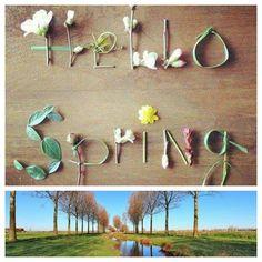 Maart. …Het begin van de Lente. …ontluikende bloesems. …nieuw leven. …groen in de natuur. ..ik voel het kriebelen. …dit is mijn tijd van jaar. …Hier wordt ik blij van! Hello Maart. ..Kom snel binnen....