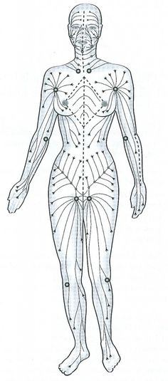 Have you considered acupuncture? Many people are making the choice to bypass traditional doctors and use acupuncture for manu different things in their life. If you want to learn more about this al… Ayurveda, Lymphatic Drainage Massage, Foot Reflexology, Acupuncture Points, Massage Benefits, Face Massage, Massage Techniques, Lymphatic System, Alternative Treatments