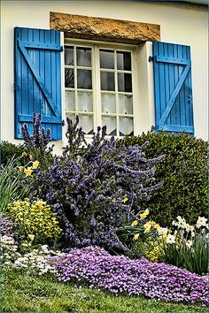 wikiHow to Create a Cottage Garden -- via wikiHow.com