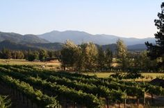 Troon Vineyard, Jacksonville/Applegate Valley