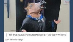 The Harry Potter fandom is strong on Tumblr! Check out the best posts in this funny Smosh gallery.