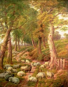 Landscape with Sheep by Jones, Charles (1836-92)