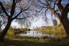 Milwaukee in fall