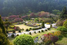The Garden of Morning Calm, Gapyeong, Korea