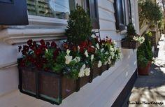 Window Boxes Charleston Style #bebetsy