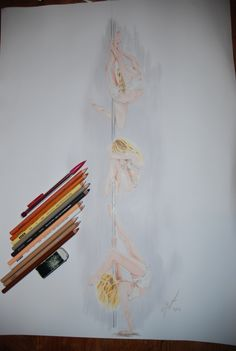 """strength passion serenity"" prismas and babyoil on sketch follows poses of Anastasia Skukhtorova pole art"