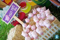 cakepop fiesta en la Granja evento infantil cumpleaños - kids children cakepop birthday farm party miraquechulo