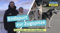 Eva und Moritz haben es fast geschafft. Noch knapp 80 Kilometer sind es bis zur Zugspitze und für ihre letzte Etappe sind sie mit dem Hundeschlitten, mit ihrem Velo-Mobil und mit drei Pferdekutschen unterwegs. Schaffen sie es rechtzeitig zu Deutschlands höchstem Berg, zahlt ANTENNE BAYERN ihre Traumhochzeit. Moritz, Berg, Zugspitze