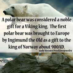Viking Bears More @facebook.com/rocklovefanpage