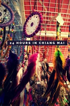 Exploring Chiang Mai - A complete guide to this beautiful North Thailand city. Click to read the best things to do in Chiang Mai in a 24 hour itinerary - from food to night markets for shopping, hotels to offbeat experiences - We have covered it all in JUST one day! Find out how.