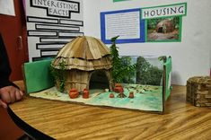 Native American Museum Research Project