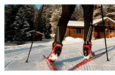 Buying Guide For Cross Country Skis