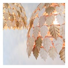 Our Holly Lamps are so special. They are made out of individually hand cut coco shells! Creative Studio, Instagram Accounts, Making Out, Lamps, Shells, Design, Lightbulbs, Conch Shells, Seashells