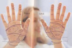 Výsledok vyhľadávania obrázkov pre dopyt reflexni terapie
