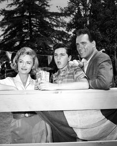 THE DONNA REED SHOW - TV SHOW PHOTO #BW52