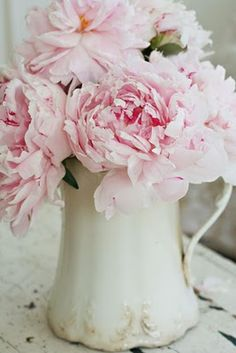 peonies and white jug