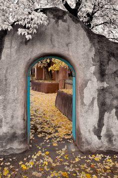Taos Fall