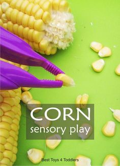 Corn Sensory Play Simple sensory play invitation with corn, exploring different textures and working on fine motor skills Sensory Activities Toddlers, Sensory Bins, Autumn Activities, Infant Activities, Sensory Play, Toddler Preschool, Motor Activities, Sensory Motor, Sensory Issues