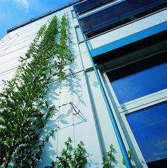 Green Wall Systems Gallery #fachadasverdesverticalgardens