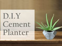 Nice! DIY Cement Planter by Yodha