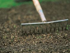 How to Seed Your Lawn Using Dormant Seeding Techniques --> http://www.hgtvgardens.com/lawn-care/sow-cool-give-your-lawn-a-head-start-with-dormant-seeding?soc=pinterest