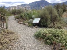 See 5 photos from 21 visitors to Desert Centre Osoyoos. Toronto, Centre, Deserts, Canada, Adventure, Mountains, Places, Nature, Travel