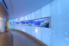 """Thin bezel monitors in the color-changing lobby """"welcome wall"""" help to guide guests to waiting areas and treatment wings. The theme of light is carried throughout the renovation. Photo: ©2015 Hanson Photo Graphic"""