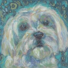 "Daily Paintworks - ""Maltese"" - Original Fine Art for Sale - © Kathy Hiserman"