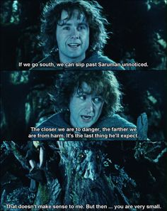 The Lord of the Rings: The Two Towers. I cannot read this without Pippin's cute hobbit accent. Gandalf, Legolas, Fellowship Of The Ring, Lord Of The Rings, Saga, J. R. R. Tolkien, Tolkien Books, Concerning Hobbits, Into The West