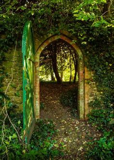 Look on every exit as being  an entrance to somewhere else.  - Tom Stoppard    Forest Portal  Hampshire, England  by Anguskirk photography