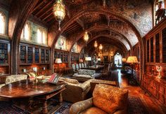 The architecture, the ornamentation, the bookcases and windows and furnishings. WOW