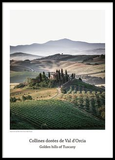 Nature prints and posters with nature designs - Shop photography prints of nature at Desenio