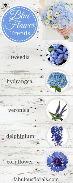 Blue Flowers Wedding Trends! Blue Wedding Flowers and blue bouquets! Blue wedding palette #bluewedding #bluecenterpieces #blueflowers #bluebouquet