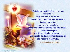 #HoraSEXTA #LiturgiaDeLasHoras #LectioDivina  http://www.liturgiadelashoras.com.ar/sync/ http://www.liturgiadelashoras.com.ar/sync/2016/abr/23/sexta.htm Himno: VERBO DE DIOS, EL SOL DE MEDIODÍA Salmo 118, 169-176 Salmo 44 LECTURA BREVE   1Co 15, 20-22 ORACIÓN CONCLUSIÓN