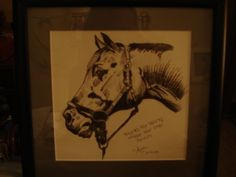 My first color pencil drawing of a horse :) by A.Considine