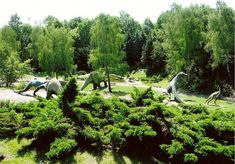 Sounds like a honeymoon destination to me. Silesian Zoological garden in Poland, here we come!