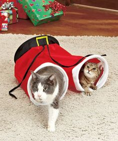 Santa's Pants Cat Tunnel So Cute Low qty Kitty Pet Toy [SM208011-7SOT] - $14.95 : Smart Saver LLC