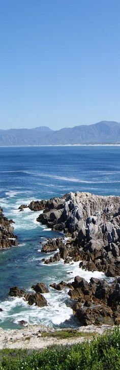 Walker Bay - Hermanus, Western Cape - South Africa | Africa