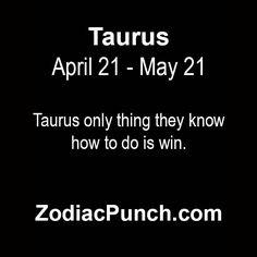 taurus7