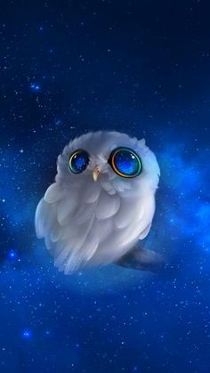 Beautiful Nature Pictures, Beautiful Owl, Flower Backgrounds, Wallpaper Backgrounds, Diy Pinterest, Hd Phone Wallpapers, Owl Pictures, Cool Art Drawings, Owl Art