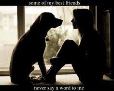 Some of my best friends never say a word to me. ♥