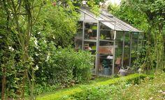 Gartenspaß unter Glas -  Das Angebot an Gewächshäusern ist mittlerweile so vielfältig, dass für jeden Garten und für jeden Verwendungszweck etwas dabei ist.