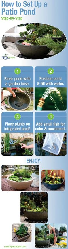 Patio Pond Set-Up Infographic #watergardens
